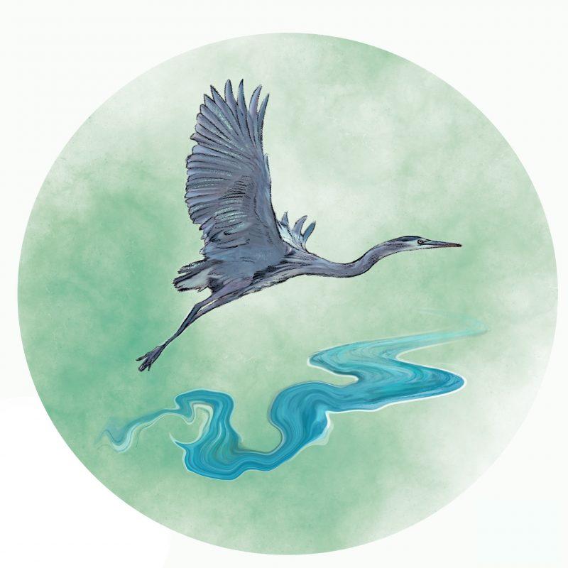 Riverbird Clinic